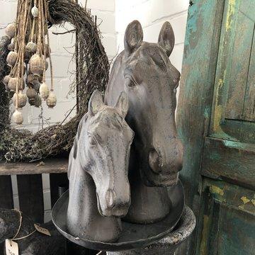 Stoer paardenhoofd